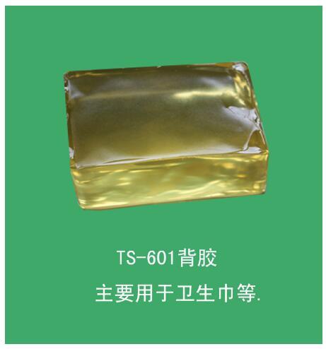 TS601 Back